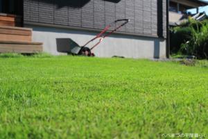 芝生の庭 平屋